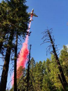 Crew 11 - Tamarack Fire