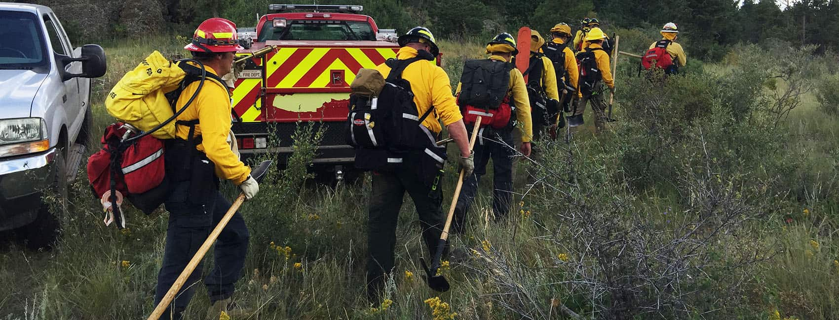 Photo of Wildland Firefighters